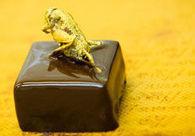 Des chocolats aux insectes | Strange days indeed... | Scoop.it