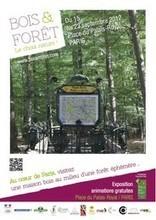 Une forêt éphémère au coeur de Paris ! | Just Do It Yourself | Scoop.it