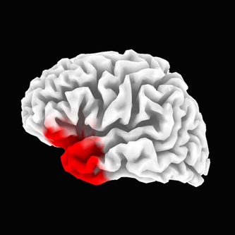 Inexpensive Brain Scans Could Catch Concussions - Technology ...   Afghanistan&Turkey- Kira   Scoop.it