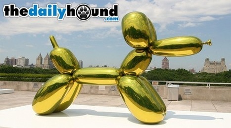 Happy Dogs Love Playing With Balloons - The Daily Hound — The Daily Hound | Moment of life | Scoop.it