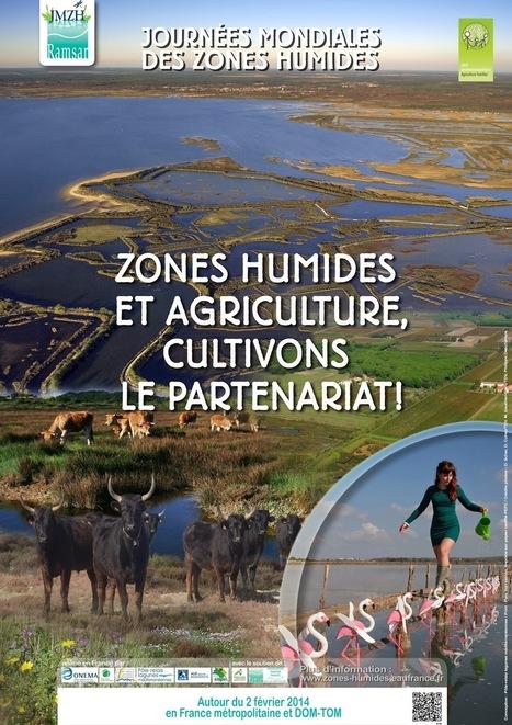 Journée Mondiale des Zones Humides | Géographie : les dernières nouvelles de la toile. | Scoop.it