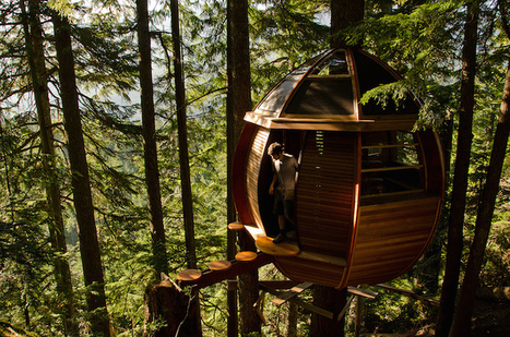 Egg-Shaped Tree House is Secretly Nestled in Canada's Woods | Le It e Amo ✪ | Scoop.it