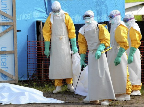 WHO can't fully deal with Ebola outbreak, health official warns | Virology and Bioinformatics from Virology.ca | Scoop.it