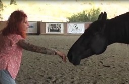 Servant-Leadership | Holistic Horses from PENZANCE Equine Integrative Solutions | Scoop.it