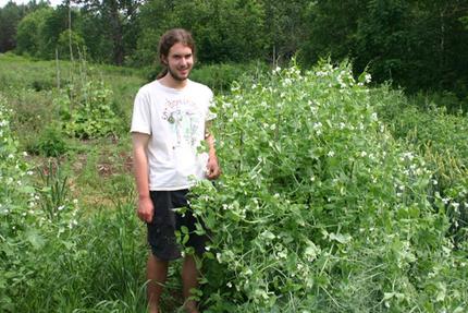 Annapolis Valley Heritage Seeds | Annie Haven | Haven Brand | Scoop.it