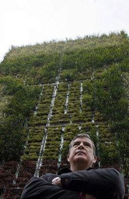 La Ciudad de México lucha contra la contaminación - Terra México   Cultivos Hidropónicos   Scoop.it