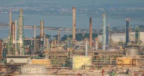 Total va devenir un importateur important d'huile de palme en France | PRODUITS AGRICOLES ET MARCHES - AGRICULTURAL PRODUCTS AND MARKETS | Scoop.it