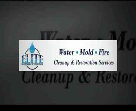 mold removal in Newtown | Water Removal Doylestown | Scoop.it