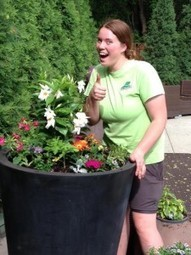 Container Gardening: Dos and DON'Ts - Peterson Lawn Services | garden farm | Scoop.it