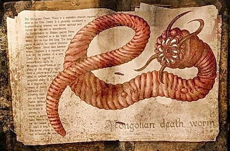 Olgoi-Khorkhoi, Mongolian Death Worm | They were here and might return | Scoop.it