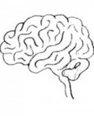 The Ways, and Whys, of Autism | Psychology Today | Mental Health | Scoop.it