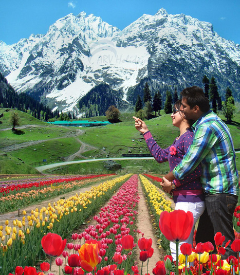 Enjoy Your Honeymoon in the Heaven of Kashmir | Honeymoon tour package