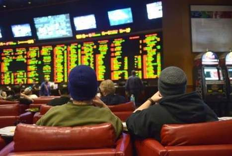 Horse racing industry needs to embrace new betting ideas | CALS in the News | Scoop.it