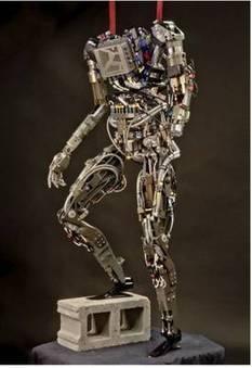 Pet-Proto, le robot escaladeur de la Darpa | Complexité | Scoop.it
