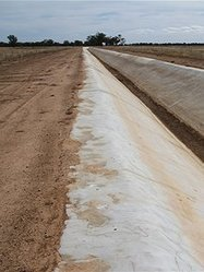Murray-Darling Basin Plan - ABC Rural - Australian Broadcasting Corporation | SJC Science | Scoop.it