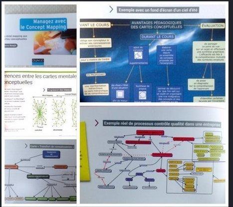 Manager avec le concept mapping , livre tout en couleurs est paru - [MIND MAPPING POUR TOUS] | Penser, réfléchir, planifier avec la carte heuristique, les cartes conceptuelles | Scoop.it