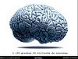La méditation de pleine conscience, un outil pour résister à la dépression! | Les 7 du Québec | La pleine Conscience | Scoop.it