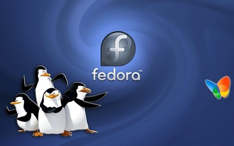 Upgrade de Fedora 23 vers 24 Server Edition | Informatique | Scoop.it