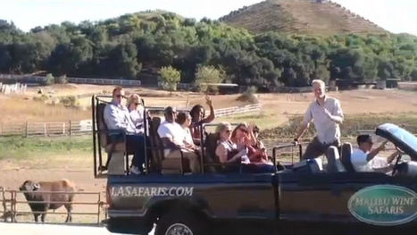 Wine Safari Blends Vino and Views - MyFox Los Angeles | World Wine Stories | Scoop.it
