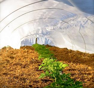 Un sistema wireless per l'agricoltura - Tech4Green   Sustain Our Earth   Scoop.it