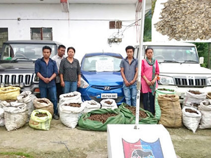 Indian police seized 10 tonnes of pangolin scales after routine car check | Wildlife Trafficking: Who Does it? Allows it? | Scoop.it