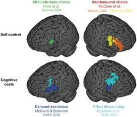 Neural and Behavioral Evidence for an Intrinsic Cost of Self-Control | Social Foraging | Scoop.it