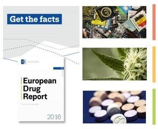2016 European Drug Report | War on Drugs is a War on People | Scoop.it