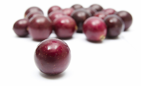 Muscadine Grape Resveratrol. Home grown, natura... | Peanuts, bioactive superfood in a shell | Scoop.it