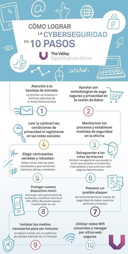 Infografía: Cómo lograr la ciberseguridad en 10 pasos | TECNOLOGÍA_aal66 | Scoop.it