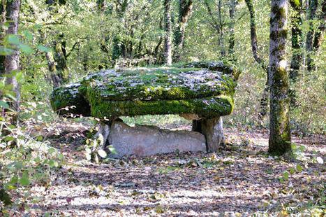 Le dolmen du Bois del Rey | Megalithes en photo | Scoop.it