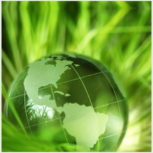 How to Choose a Good Environmental Consultant   News and Society » Environmental   Scoop.it