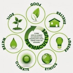 Permaculture: A Healthy Sustainable Alternative to Agri-Business ... | Global Health- CAM | Scoop.it