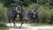 Giddy-up! Robotic mule is a YouTube star | Robots and Robotics | Scoop.it