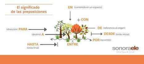 Un poquito más de luz sobre las preposiciones | Español para los más pequeños | Scoop.it