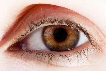 forskning.no > Skriver ut celler for å kurere blindhet | Naturfag | Scoop.it