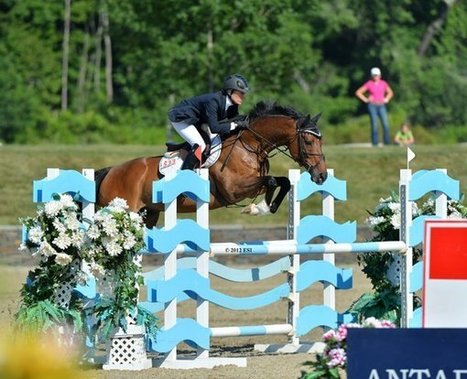 A Thoroughbred 'creampuff' turns Warmbloods to jelly | Horse Racing News | Scoop.it