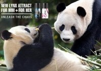 Tian Tian panda baby could be worth £50m to Scottish economy | New Baby | Scoop.it