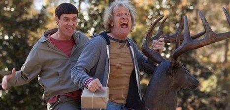 Watch Dumb and Dumber To (2014) Movie Online - Tackk | HDTV Watch Online | Scoop.it