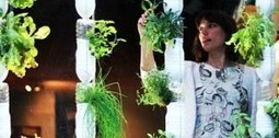 Elle se nourrit grâce à son jardin planté dans son minuscule appartement de New-York! - L'Humanosphère | Horticulture urbaine et périurbaine | Scoop.it