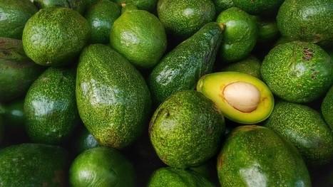 Ces aliments dont lesuccès est unemenace pourl'environnement | Attitude BIO | Scoop.it