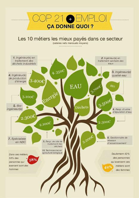 Développement durable : photographie sur l emploi en France | Emploi et formation dans le domaine de l'énergie et du développement durable | Scoop.it