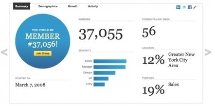 New LinkedIn Groups Stats | WordPress Google SEO and Social Media | Scoop.it
