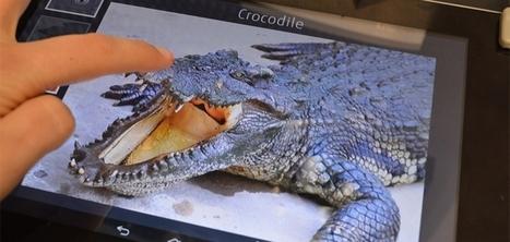 Fujitsu dévoile une technologie pour tablette permettant de ressentir les textures des images | Cabinet de curiosités numériques | Scoop.it