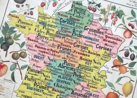Une proposition de loi pour manger local | Alimentation Générale | AG | Circuits courts | Scoop.it