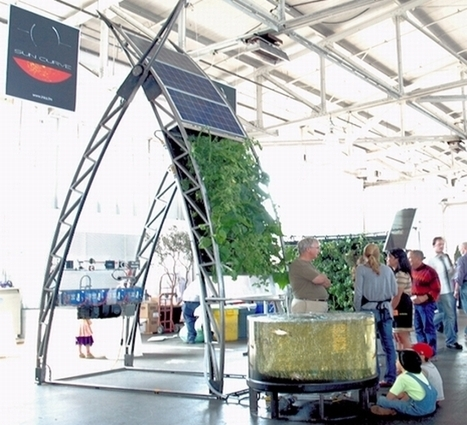 Inka Sun Curve Solar and Wind-powered Aquaponics System | Wellington Aquaponics | Scoop.it