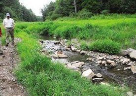 Dam removal benefits Eliot brook habitat - Seacoastonline.com | Fish Habitat | Scoop.it