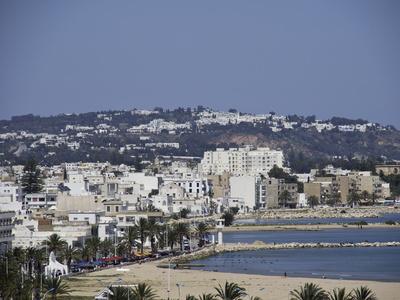 La Tunisie, futur champion régional dans les secteurs numérique et santé ? | Export, International, B2B, Business development | Scoop.it