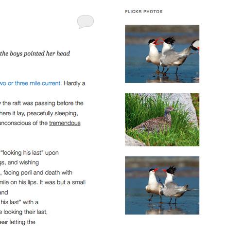 Create a Basic Flickr Widget Using the Widget API | Fotografia e Linux | Scoop.it