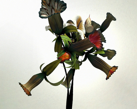 Flowers Grown from the Topography of a Museum | Art-STEM Connections | Scoop.it