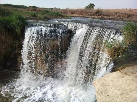 World Bank grants Egypt US$6.7 mn for water resources | Égypt-actus | Scoop.it